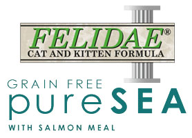 Felidae Pure Sea Logo