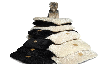 Pet Bedding